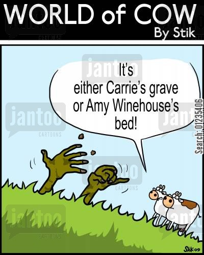 amy winehouse cartoon humor: 'It's either Carrie's grave or Amy Winehouse's bed'