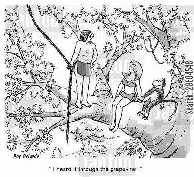 jungles cartoon humor: 'I heard it through the grapevine.'