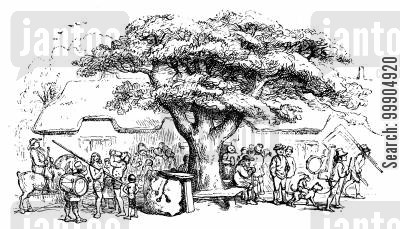 villages cartoon humor: The village oak.
