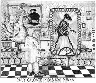 surrealists cartoon humor: 'Only caudate moas are pukka.'
