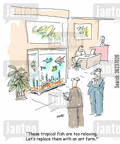 drones cartoon humor: 'These tropical fish are too relaxing. Let's replace them with an ant farm.'