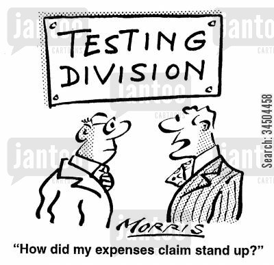 falsity cartoon humor: Testing Division - How did my expenses claim stand up?