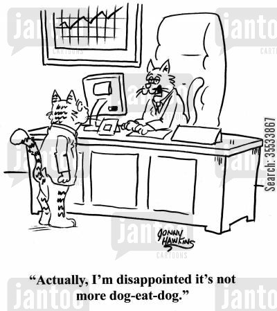dog eat dog world cartoon humor: Cat executive: 'Actually, I'm disappointed it's not more dog-eat-dog.'
