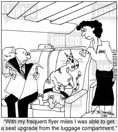 luggage compartment cartoon humor: 'With my frequent flyer miles I was able to get a seat upgrade from the luggage compartment.'
