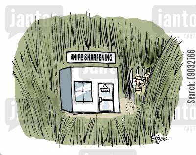sharpen cartoon humor: Explorers come across knife sharpening business in jungle.