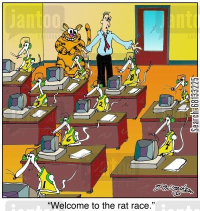 ratting cartoon humor: 'Welcome to the rat race.'