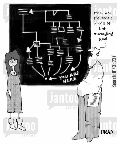 management strategies cartoon humor: 'These are the people who'll be line managing you.'