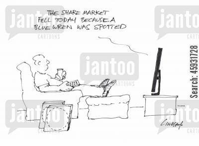 instability cartoon humor: 'The share market fell today because a Blue Wren was spotted.'