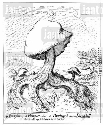 pitt cartoon humor: William Pitt the Younger as a 'Toadstool upon a Dunghill'