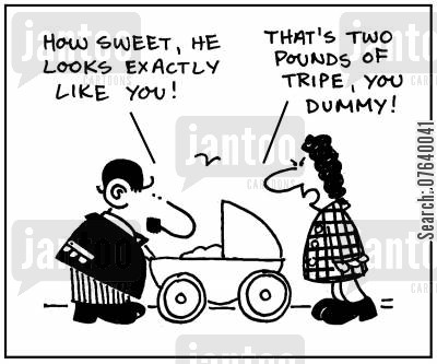 push chair cartoon humor: 'How sweet, he looks exactly like you. ' -'That's two pounds of tripe, dummy.'