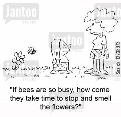 busy bee cartoon humor: 'If bees are so busy, how come they take time to stop and smell the flowers?'