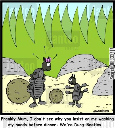 clean hands cartoon humor: 'Frankly Mum, I don't see why you insist on me washing my hands before dinner: We're Dung-Beetles...'