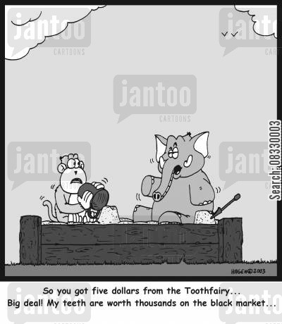 ivory cartoon humor: 'So you got five dollars from the Toothfairy... Big deal! My teeth are worth thousands on the black market...'