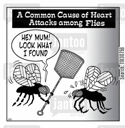 dangerous weapons cartoon humor: A Common Cause of Heart Attacks Among Flies.