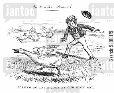 joking cartoon humor: Screaming Latin Joke by Eton Boy
