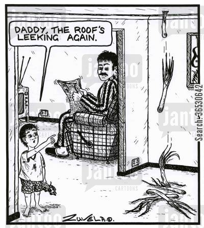 diy disaster cartoon humor: 'Daddy, the roof's leeking again.'