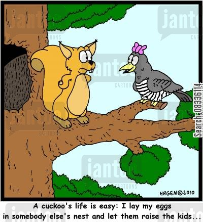 egg laying cartoon humor: 'A cuckoo's life is easy: I lay my eggs in somebody else's nest and let them raise the kids...'