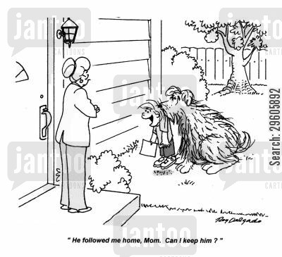 follows cartoon humor: 'He followed me home, Mom. Can I keep him?'