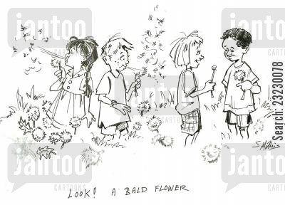 dandelion cartoon humor: 'Look! A bald flower.'