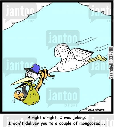 stork delivery cartoon humor: 'Alright alright, I was joking: I won't deliver you to a couple of mongooses...'