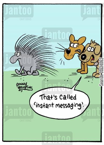 instant messaging cartoon humor: Dog to dog about porcupine quill in nose: 'That's called 'instant messaging'.'