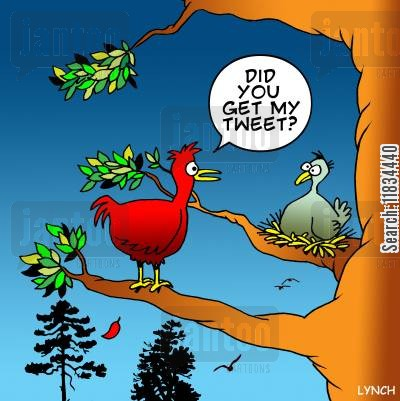 bird song cartoon humor: 'Did you get my tweet.'