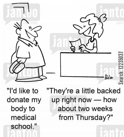 cadaver cartoon humor: 'I'd like to donate my body to medical school.' 'They're a little backed up right now -- how about two weeks from Thursday?'