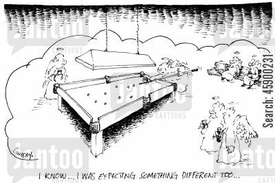 snooker table cartoon humor: 'I know...I was expecting something different too...'