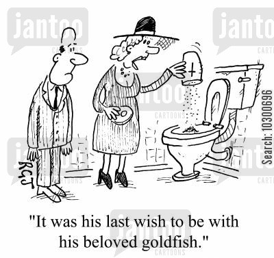 flushed cartoon humor: It was his last wish, to be with his beloved goldfish