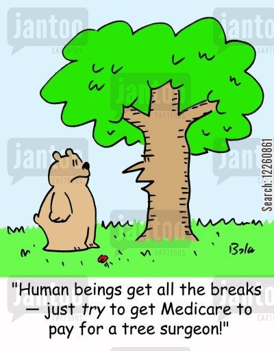medical cover cartoon humor: 'Human beings get all the breaks -- just TRY to get Medicare to pay for a tree surgeon!'