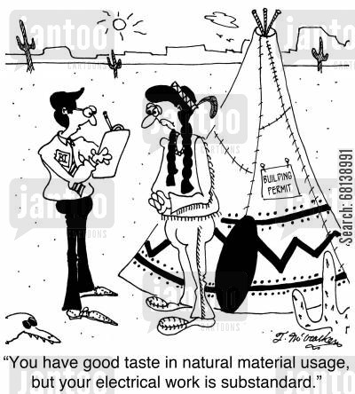 building permits cartoon humor: 'You have good taste in natural material usage, but your electrical work is substandard.'