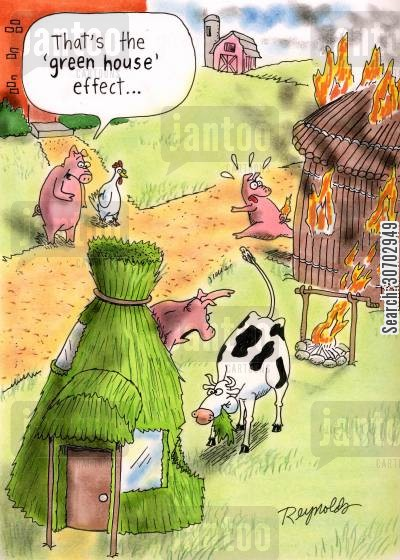 chickens cartoon humor: 'That's the 'green house' effect...'