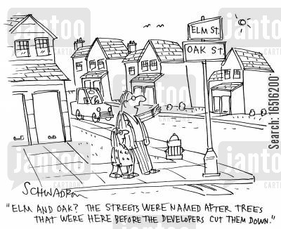 elm cartoon humor: 'Elm and oak? The streets were named after trees that were here before the developers cut them down.'