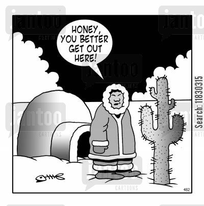polar ice cap cartoon humor: Honey, you better get out here!