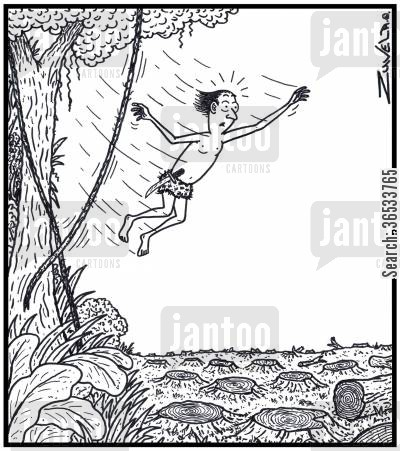 conservation cartoon humor: Jungle Man has found himself without a vine or forest to swing too due to logging.