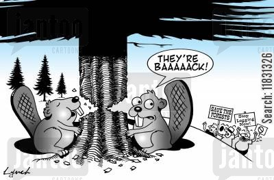 environmental protesters cartoon humor: Save the Forests!