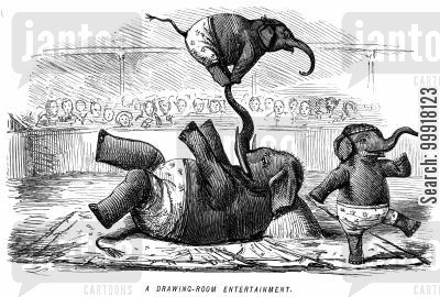 perform cartoon humor: Elephants performing in a circus