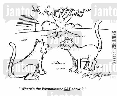 showing cartoon humor: 'Where's the Westminster cat show?'