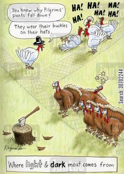 turkey meat cartoon humor: 'You know why Pilgrim's pants fall down? They wear their buckles on their hats.' Where Light and Dark Meat Comes From.