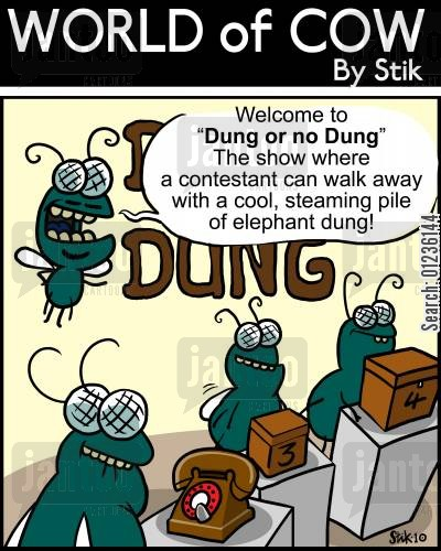 cash prize cartoon humor: Welcome to 'Dung or no Dung!' The show where a contestant can walk away with a cool, steaming pile of elephant dung!