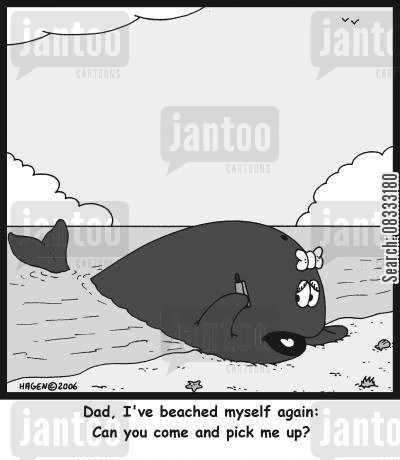 taxi services cartoon humor: 'Dad, I've beached myself again: Can you come and pick me up?'