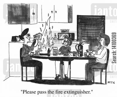cook book cartoon humor: Please pass the fire extinguisher.