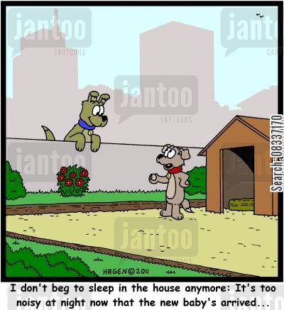 dog houses cartoon humor: 'I don't beg to sleep in the house anymore: It's too noisy at night now that the baby's arrived...'