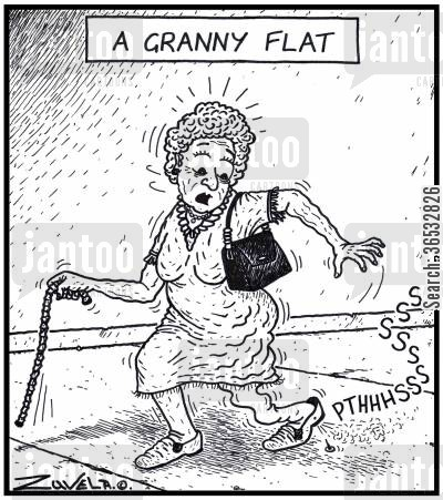 flat tyres cartoon humor: A Granny Flat.