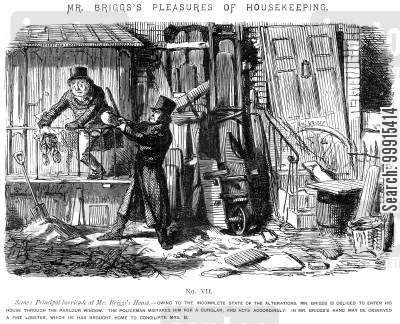 arresting cartoon humor: Mr Briggs's Pleasures of Housekeeping - No. VII