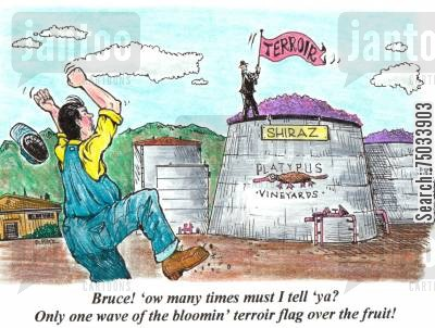 breweries cartoon humor: 'Bruce! 'ow many times must I tell 'ya? Only one wave of the bloomin' terroir flag over the fruit!'