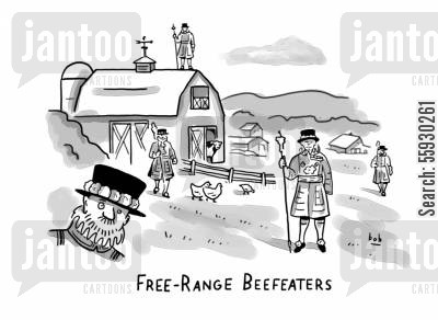 free range chickens cartoon humor: Free Range Beefeaters.
