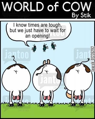 cut costs cartoon humor: I know times are tough, but we just have to wait for an opening!