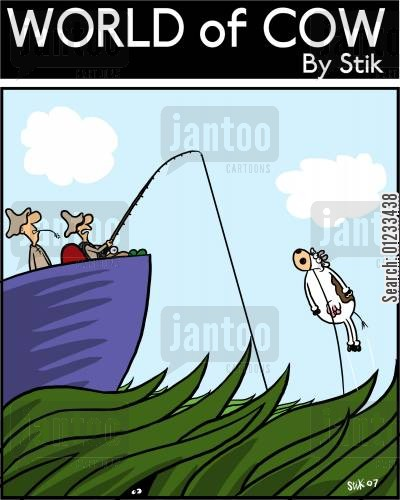 bait cartoon humor: Cow Fishing on the mighty tundra.