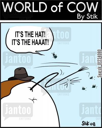 steven speilberg cartoon humor: 'It's the Hat! It's the HAAAT!'